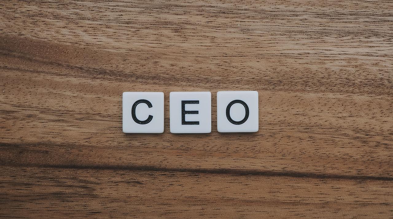 Werde zum CEO - Parascha Wajelech