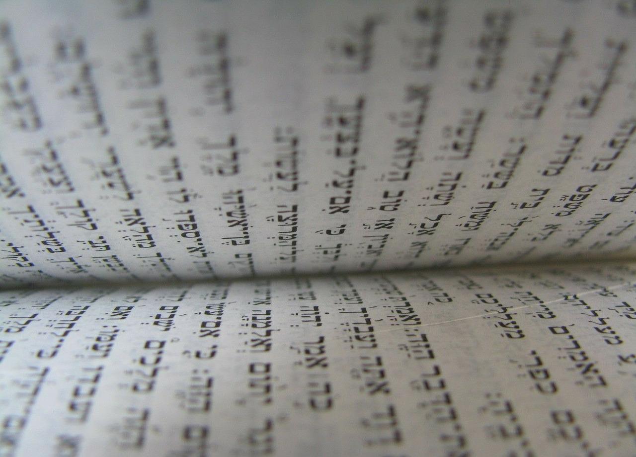 Die universelle Regel, von der die ganze Tora abhängt - Parascha Noach